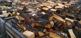 Kde dostanete kvalitní palivové dřevo?