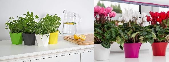 plastove-kvetinace